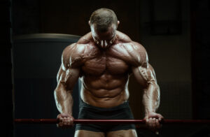 spiergroei bodybuilding sets per training volume